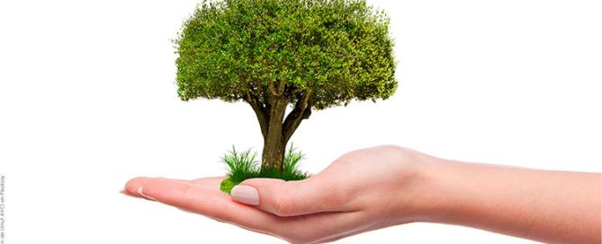 precintos sostenibles y reciclables